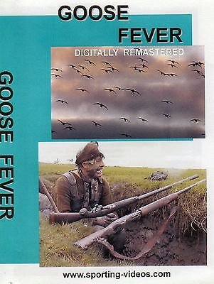 GOOSE FEVER - WILDFOWLING DVD - geese, solway, scotland, gundogs