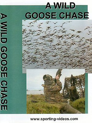 A WILD GOOSE CHASE - WILDFOWLING DVD - geese, scotland, gundogs, pinkfoot