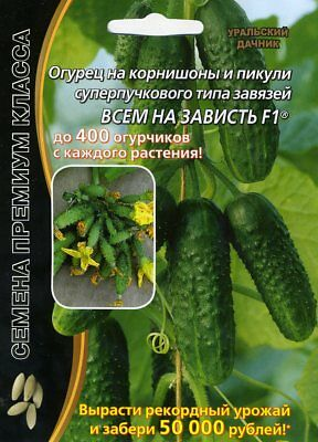 "Cucumber ""EVERYTHING FOR ENVY F1""  Russian High Quality."