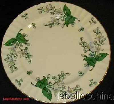"""Royal Worcester Valencia 6.25"""" Bread Side Plate Green Leaves English Bone China"""