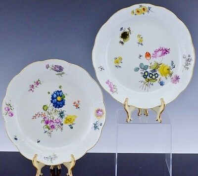 2 Beautiful Very Large Meissen Porcelain Botanical Charger Plates Deep Platters