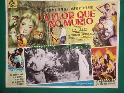 Audrey Hepburn Green Mansions Anthony Perkins Orig Spanish Mexican Lobby Card 2