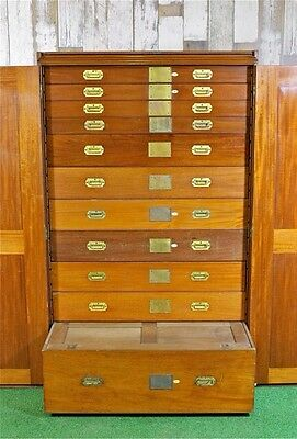 Collectors Museum Cabinet - The Natural History Museum Haberdashery Drawers