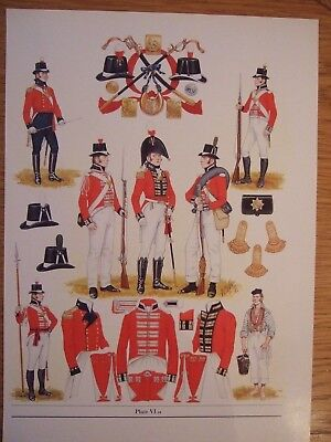 MILITARY PRINT- c 1805  ROYAL MARINES BY  B FOSTEN