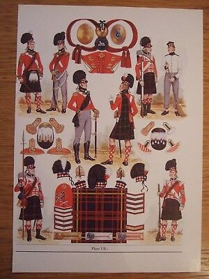 Military Print- 1810-15 79Th Regiment Of Foot (Cameron Highlanders) By  B Fosten