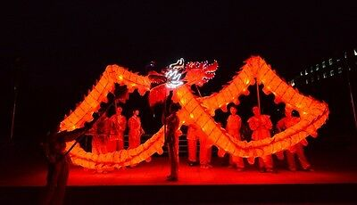 10M For 6 adult CHINESE Festival Illuminated DRAGON DANCE Costume Led Lights