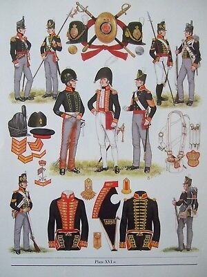 "MILITARY 12"" x 9"" PRINT - 1812-1815  ROYAL REGIMENT OF ARTILLERY BY  B FOSTEN"