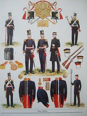 "MILITARY 12"" x 9"" PRINT -1854 ROYAL REGIMENT OF ARTILLERY BY B FOSTEN"