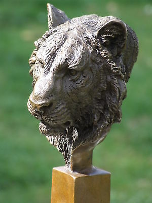 Lion Tiger Panther Big Cat Signed Pure Bronze Statue