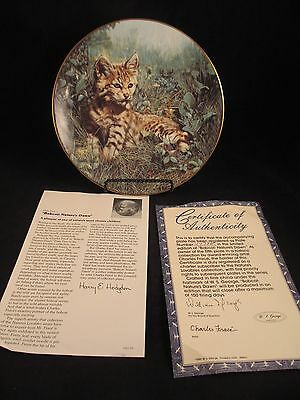 Bobcat: Nature's Dawn Nature's Lovables Plate Collection 5th in Series COA