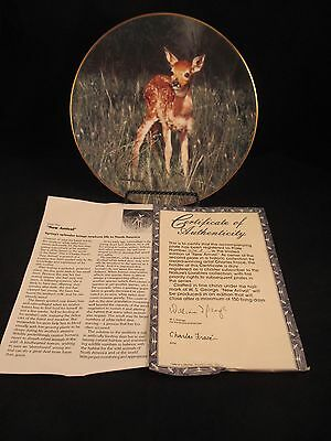 New Arrival Fawn Nature's Lovables Plate Collection 2nd in Series COA