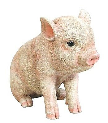 Sitting Baby PIG  Life Like Piglet Figurine Statue Home or Garden NEW Free Ship