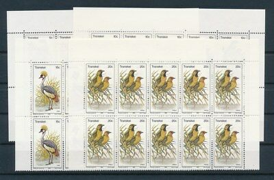 [G93161] Transkei Birds good set in blocks of 10 Very Fine MNH stamps