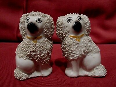 Excellent Pair Antique 19Th Century Old Staffordshire Pottery Poodle Dog Figures