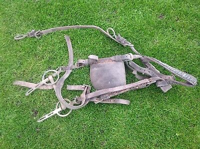 Old Leather Bridle Reins And Bit Barnsby