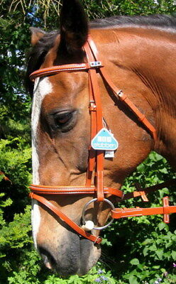 STUBBEN 3000 Limerick Split Head Raised Fine Combined Flash Bridle HONEY TAN new