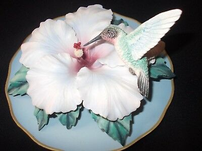 Bradex 3D Sculptural Fragile Beauty Hummingbird Plate plaque Heavenly Hibiscus