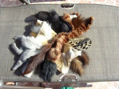 Real Fur Bits/collars/tails Etc.mink/spotty/fox+ Others....for Craft And Re Use.
