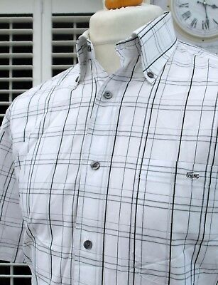 Lacoste White Check Button-Down Shirt - M/L - Size 40 - Ska Mod Scooter Casuals