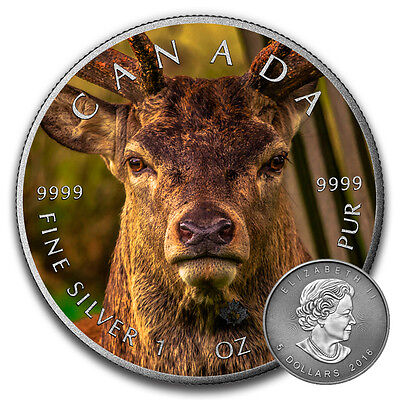 DEER - CANADIAN WILDLIFE SERIES - 2016 1oz Pure Silver Coin Color&Antique Finish