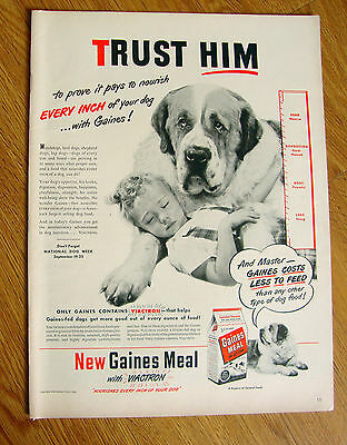 1948 Gaines Dog Food Ad  St Saint Benard Dog
