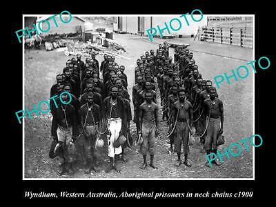 Old Large Historic Photo Of Wyndham Wa, Aboriginal Prisoners In Neck Chains 1900