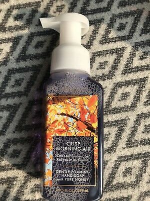 Bath And Body Works Foaming Hand Soap Crisp Morning Air