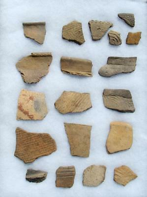 15 LARGE ALABAMA Indian Artifact-Mississippian Stamp Pottery Shards-EX. DR BURKE