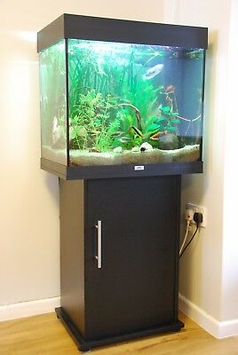 Juwel lido 120 fish tank in beech with stand filter for Aquarium 120l