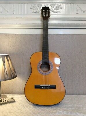 Left Handed 3/4 Classic Guitar Lefty And Case