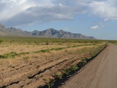 Starting at $1.00 / NO RESERVE / CASH SALE - Power in Area - Luna County, NM