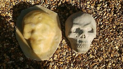Latex and fiberglass  mould of a large skull face new to market 99p no reserve