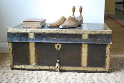 antique vintage 19th c Camphor wood Leather & Brass  bound trunk