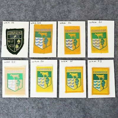 Collection Rare New Zealand District Boy Scout Badges - Cambridge WAIK 2