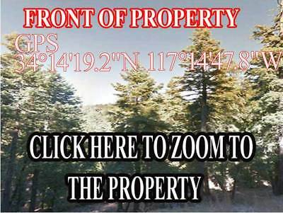 California Land Strawberry Lodge Subdivision Gregory Lake  Tall Pine Treed