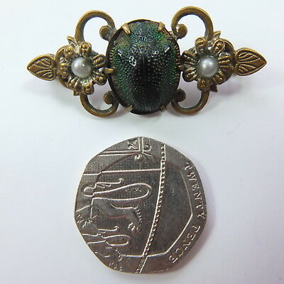 Stunning Antique Edwardian Egyptian Scarab Brooch