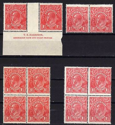 AUSTRALIA KGV HEADS MINT LOT J: 1924 1½d MULTIPLES INCL. VARIETY, 12 STAMPS