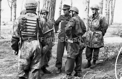 WW2 Picture Photo 1943 Italy German paratroopers in a forest Monte Cassino 2254