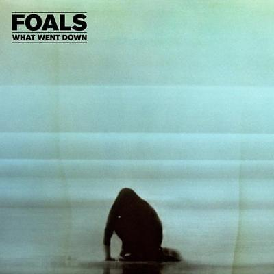 Foals What Went Down Deluxe Cd Dvd Album Import Sealed & Hand Signed Art Card !
