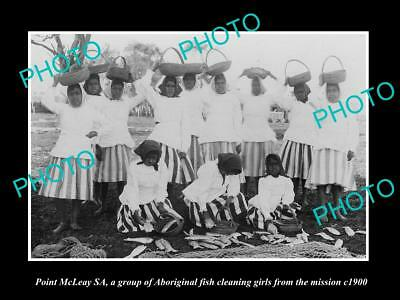 Old Historic Photo Of Point Mcleay, Group Of Aboriginal Fish Cleaning Girls 1900