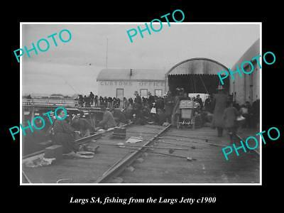 OLD LARGE HISTORIC PHOTO OF LARGS BAY, ADELAIDE, FISHING FROM THE JETTY c1900 2