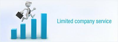 Brand New Limited Company For Sale, Bank Account, Website, Etc
