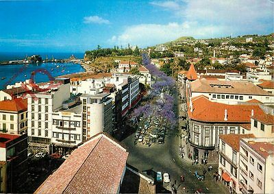 Picture Postcard~ Madeira, Funchal