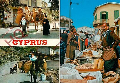 Picture Postcard: Cyprus (Multiview)