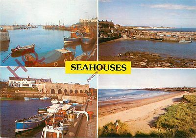 Picture Postcard--Seahouses (Multiview)