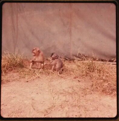Vietnam Slide- 2 Tour Army GI with 18TH ENGINEER BRIGADE collection 1966-70 #76