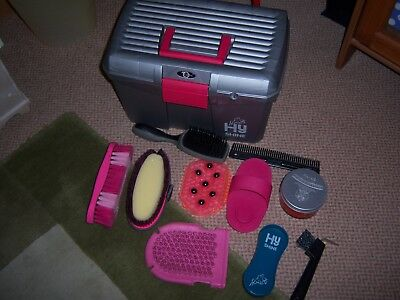 Horse Pony Grooming Kit Box and Brushes Pink and Silver Hy Shine Carr Day Martin