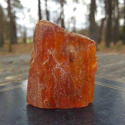 BALTIC AMBER STONE, 27.8 g. GENUINE BALTIC AMBER. HAS INSECTS