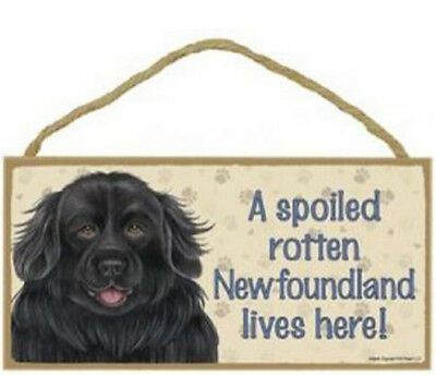 "Spoiled Rotten Newfoundland Lives Here Sign Plaque Dog 10"" x 5"" pet gift"