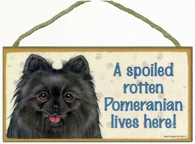 """Spoiled Rotten Pomeranian Black Sign Plaque Dog 10"""" x 5""""  pet lovers gift"""